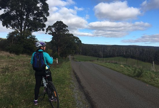Daylesford, Australië: Heading off on a forest ride.