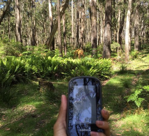 Daylesford, Australië: The GPS shows the way.