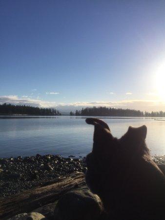 Quadra Island, แคนาดา: photo2.jpg