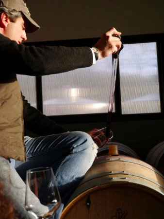 Gavorrano, Italy: Complete Wine Experiecne - Barrel Tasting