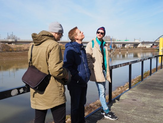 Free Walking Tour Mannheim