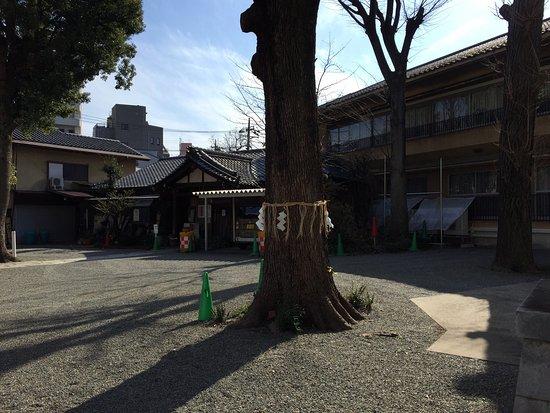 Suginami, Japón: photo4.jpg