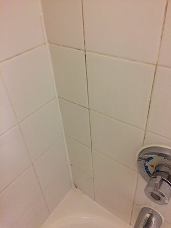 Extended Stay America - Durham - University - Ivy Creek Blvd.: Flithy cracked tiles in the shower.