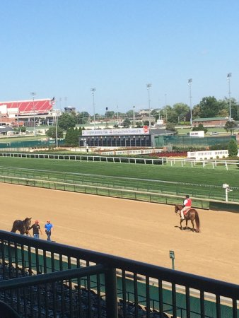 Churchill Downs: Horses on the track