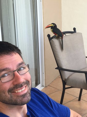 Hotel Parador: Toucan on our balcony