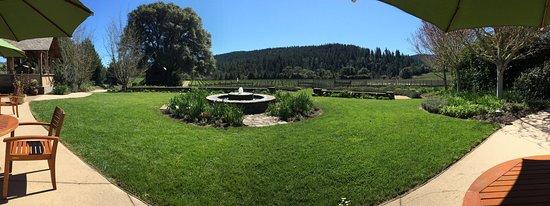 Cloverdale, CA: Goldeneye Vineyard - winner for most scenic tasting in my book!