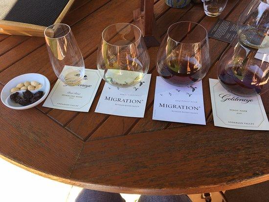 Cloverdale, CA: Truffled Marcona Almonds, dried cherries and a great sampling of wines - Goldeneye Vineyard