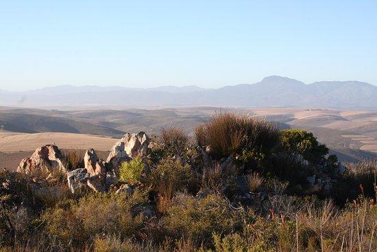 Overberg District, Sudafrica: Verreaux Trail View