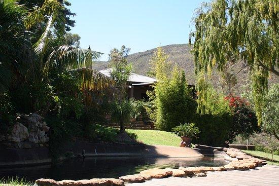 Overberg District, Sudafrica: Eyrie House Pool Deck & Garden