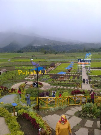 Tempat Berwisata Di Desa Wisata Pujon Kidul Kuva Pujon Kidul Tourism Village Malang Tripadvisor