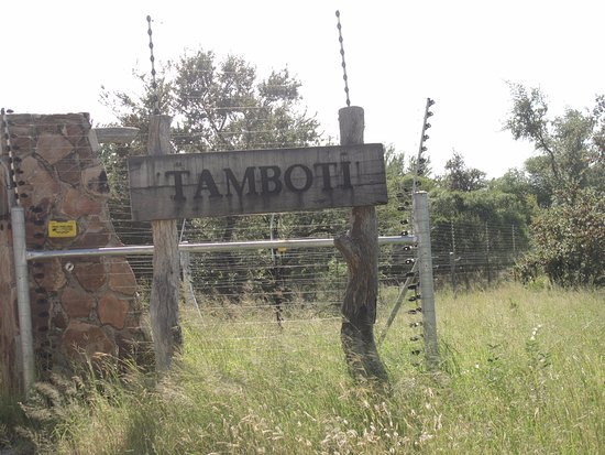 Tamboti Satellite Camp: Entrada