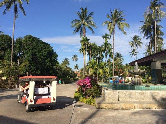 Duangjitt Resort & Spa: photo8.jpg