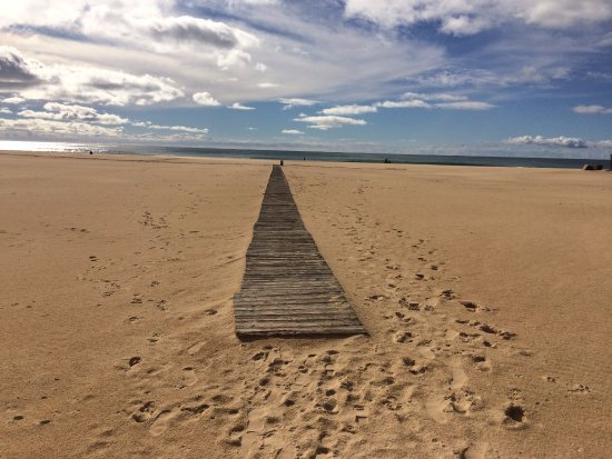 Praia de Rocha 사진
