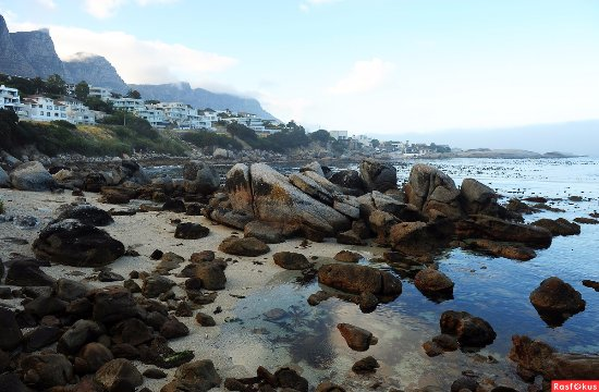 Camps Bay, South Africa: Camp's Bay