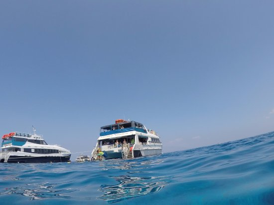Wailuku, HI: The Quicksilver boat
