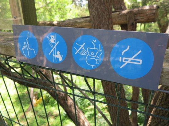 Cowes, Australia: prohibiciones