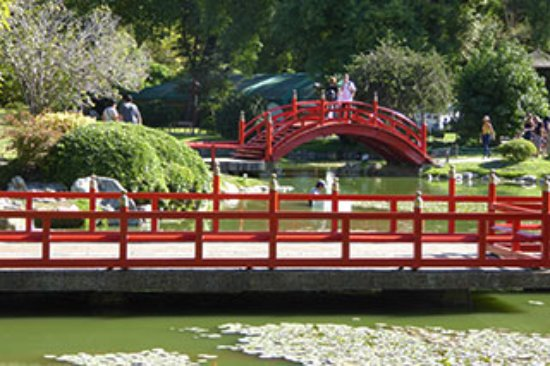 Fotograf a de jardin japones buenos aires for Como ir al jardin botanico