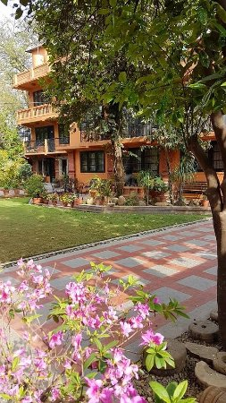 International Guest House: Giardino
