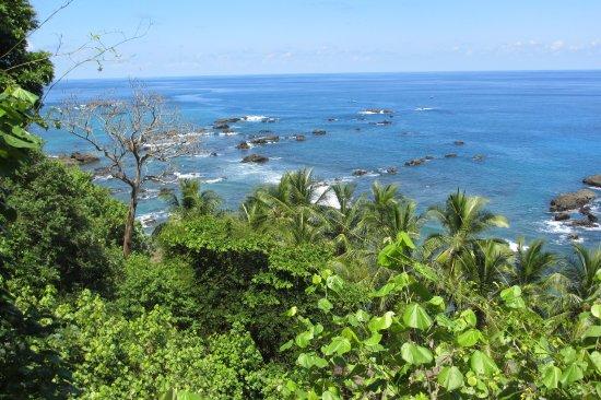 Дрейк-Бэй, Коста-Рика: Isla del Caño