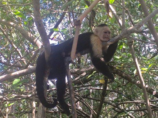 Quepos, Costa Rica: teen lounging