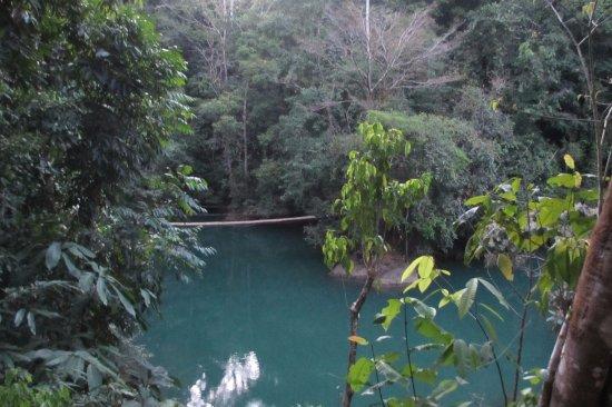 Drake Bay, Kosta Rika: Puente liana, antes de llegar a Agujitas de Drake