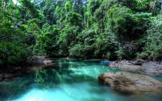Traslados Lapa Verde Costa Rica