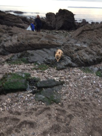 Meadfoot Beach: photo0.jpg