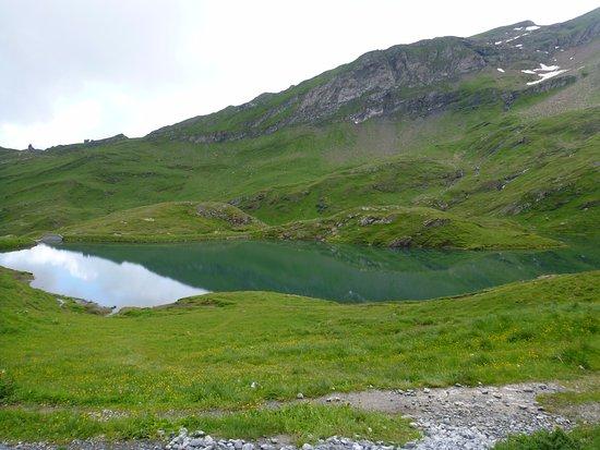 Grindelwald, Schweiz: lake on a cloudy day
