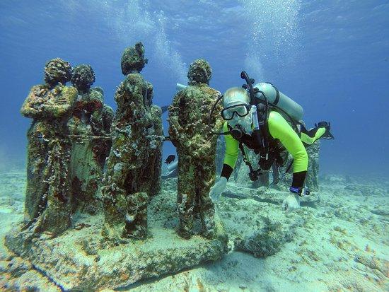 Deep Life Diving & Training : MUSA