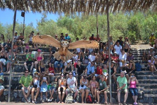 Stella Canaris Zoo: foto única gracias al personal que me hizo colaborar en ésta prueba.