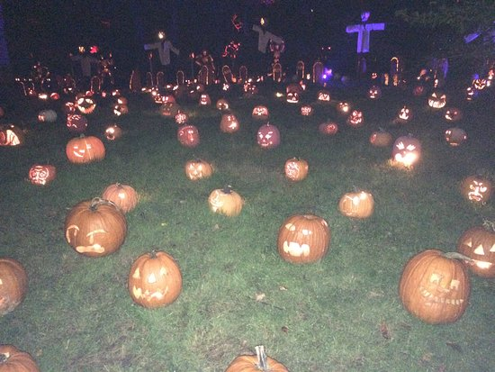 Croton on Hudson, NY: more standard pumpkin faces on the lawn