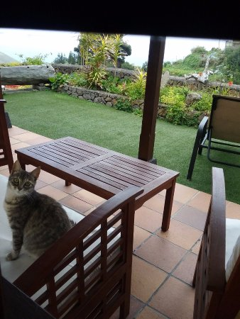 Casa Cha Miquela: La terraza con una amiga que vino a vernos