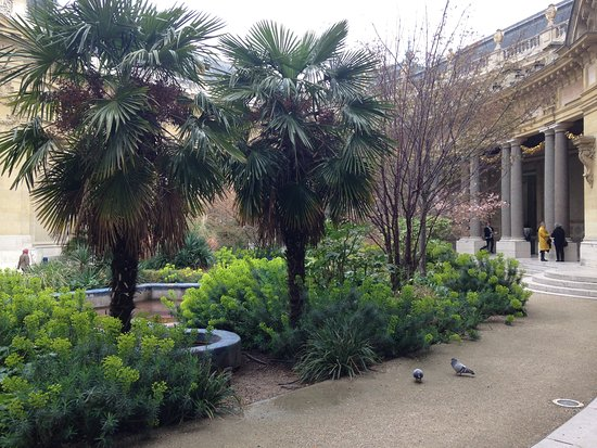 Caf le jardin du petit palais tripadvisor for Cafe le jardin du petit palais