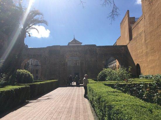 Photo of Botanical Garden Real Alcazar at Patio De Banderas, S/n., Seville 41004, Spain