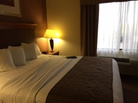 Юкка-Вэллей, Калифорния: Suite bedroom