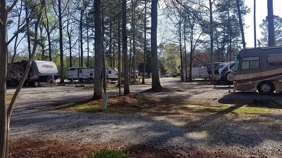 Pine Ridge Campground: Typical view of sites