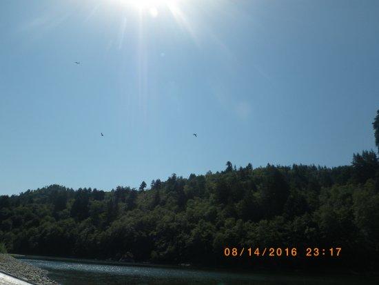 Klamath river picnic spot