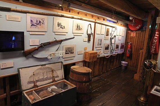 Muzeum Polarne