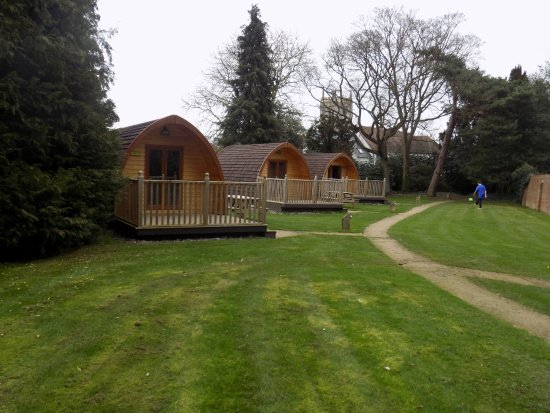 Alveston, UK: There are only 3 pods in the grounds so doesn't fee crowded.