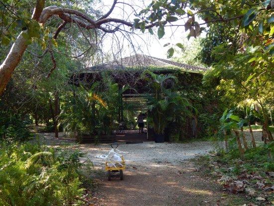 Paradise Farms B&B Farm Stay Photo