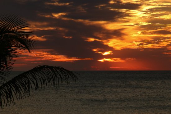 Cedar Cove Resort & Cottages : Beautiful sunsets every evening!