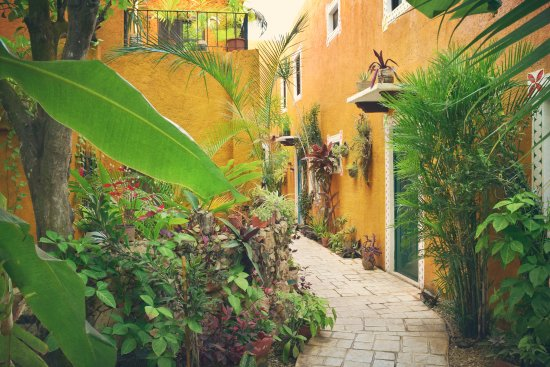 Casa Tía Micha Φωτογραφία