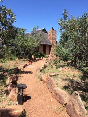 Welgevonden Game Reserve, Sudáfrica: photo5.jpg