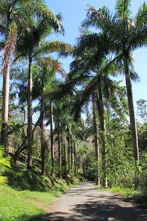 Tambor, Costa Rica: Eingang zur Lodge