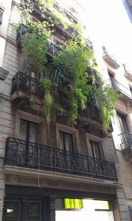 Vrabac Guesthouse: La fachada también tiene su encanto