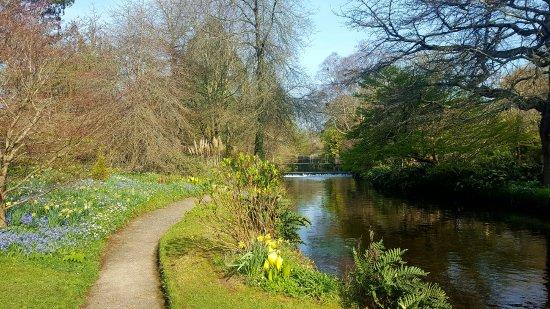 Ashford, Irland: Mount Usher Gardens