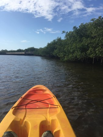 Upper Tampa Bay Park Photo