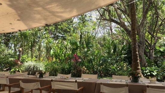 Playa Koralia: Restaurant