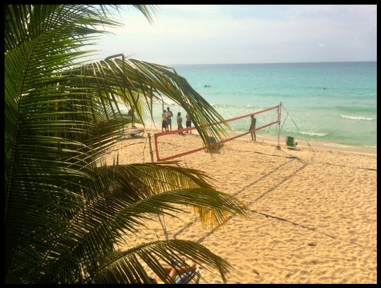 Alfred's Ocean Palace: view of the volleyball net from the second floor patio.