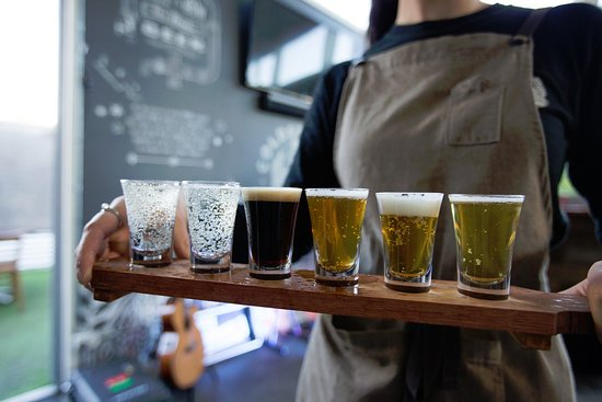 Coldstream Brewery: Coldstream Tasting Paddle